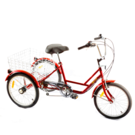 Location Tricycle Adulte